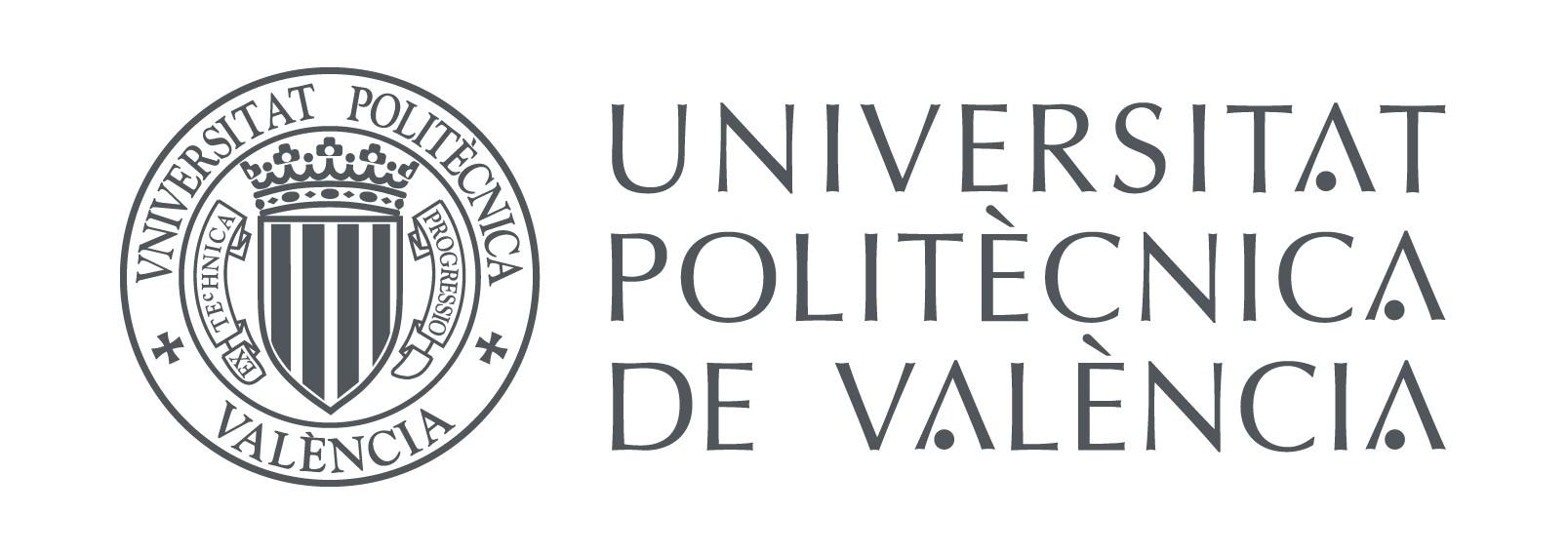 UNIVERSITAT POLITECNICA VALENCIA 1 - Casos de éxito